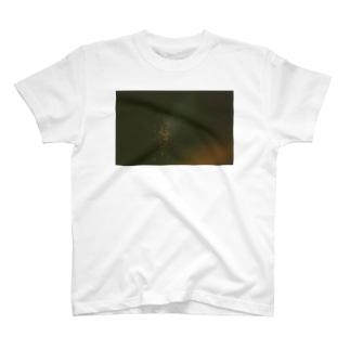 film80 T-shirts