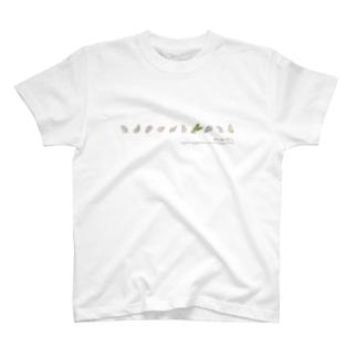 """""""森は海の恋人""""カキ&ドングリ T-shirts"""