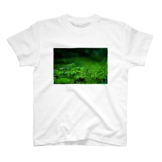 標高3センチメートル T-shirts