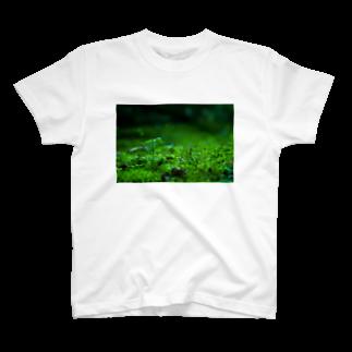 ak296の標高3センチメートル T-shirts