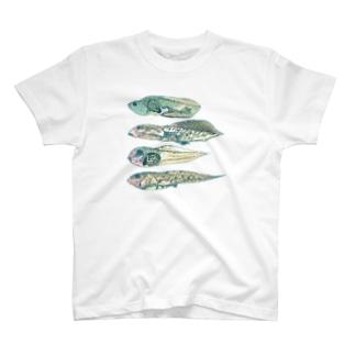 おたま T-shirts