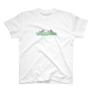 -KAWARAHIWA No.2- Bird call T-shirts