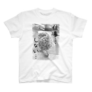 ボイコットハリネズミ T-shirts