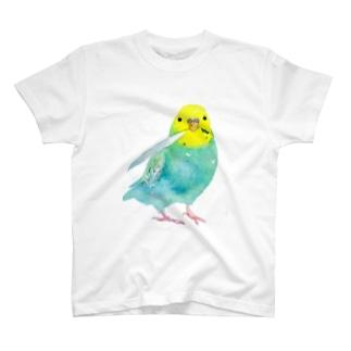 水彩セキセイ T-shirts