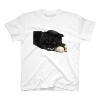 琥太郎 T-shirts