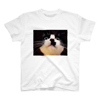 ミッチャン(ドアップ) T-shirts