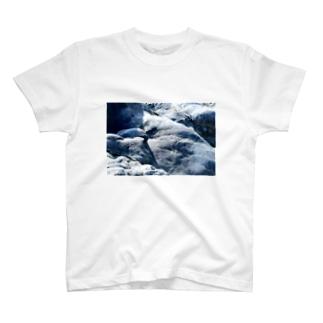 岩肌 T-shirts