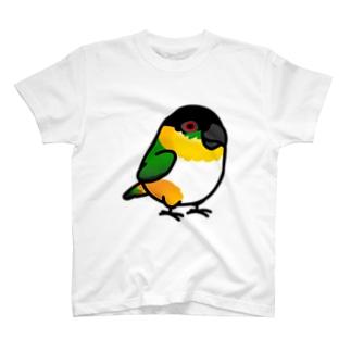 Chubby Bird ズグロシロハラインコ T-shirts