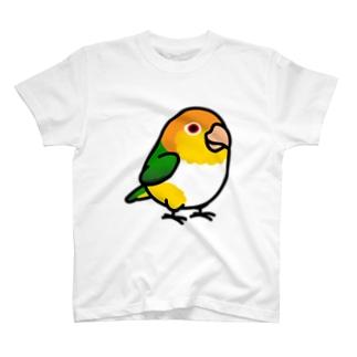 Chubby Bird シロハラインコ T-shirts