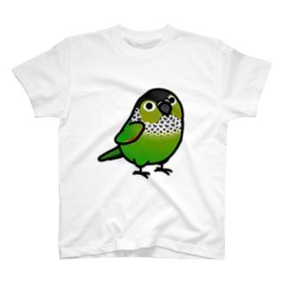 Chubby Bird ウロコインコ T-shirts