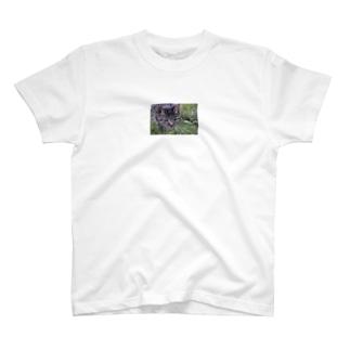 野良猫シマリ T-shirts