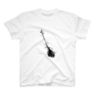 ドラティー T-shirts