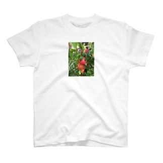 ザクロ T-shirts