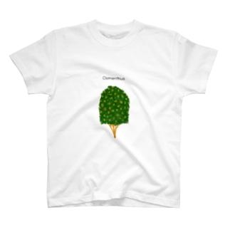 Osmanthus T-shirts