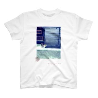 * 神楽猫 * T-shirts