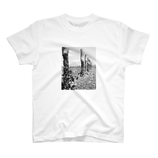 River Side T-shirts