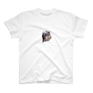 ニャンニャンズ T-shirts