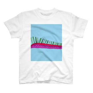 JUNSEN(純仙)天空の柵A T-shirts