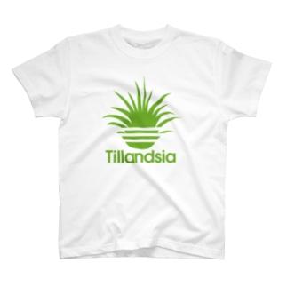 ティランジアイオナンタ(3本線) T-shirts