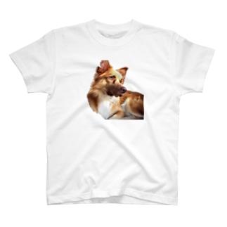 robinパーカー T-shirts