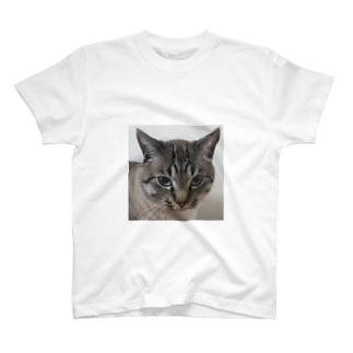 店長シエル T-shirts