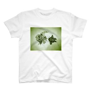 斬首する/したがるカメ T-shirts