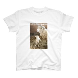 親子羊 T-shirts