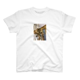 プラプラアポロ T-shirts