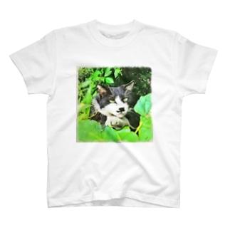 二枚目な猫 T-shirts
