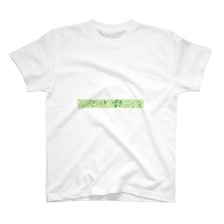 2017 T-shirts