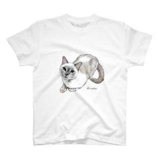 トンキニーズのビーちゃん2 T-shirts