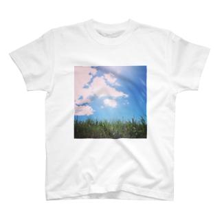眩しさは自然の輝き。 T-shirts