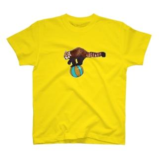 玉乗りレッサー T-shirts
