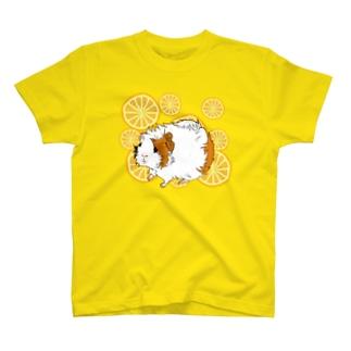 おみかんとアビシニアンのViVi T-shirts