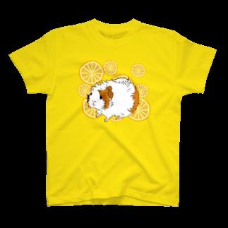nins・にんずのおみかんとアビシニアンのViVi T-shirts