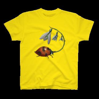 FINCH LIQUEUR RECORDSのすずらんてんとう T-shirts