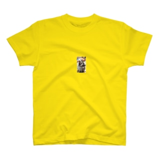 MR.ゴロチ T-shirts