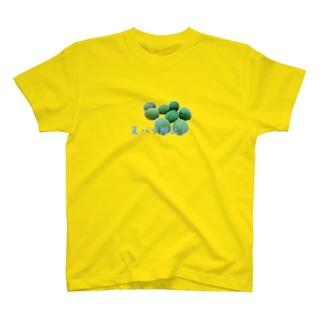 夏バテ防止! T-shirts