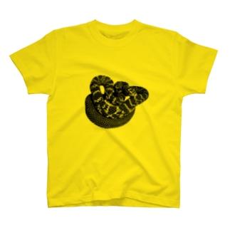 タイリクシュウダ T-shirts