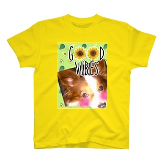 PAPI T-shirts