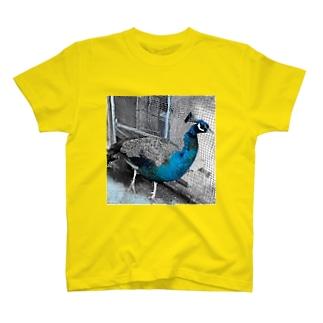 フライト☆クジャク T-shirts