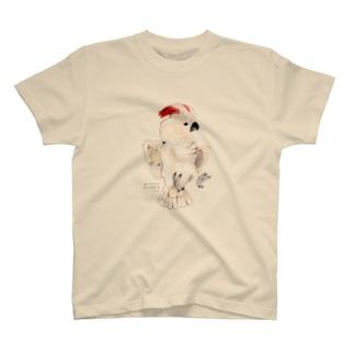 オオバタン Tシャツ
