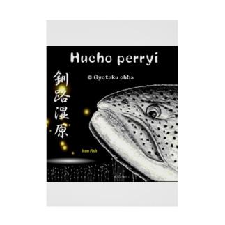イトウ!釧路湿原(HUCHO PERRYI)生命たちへ感謝を捧げます。※価格は予告なく改定される場合がございます。 Stickable poster