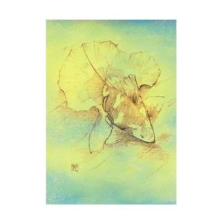 【金魚】土佐錦魚~今日ははるか未来から見たあの日~ 吸着ターポリン