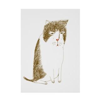 猫落ち込む 吸着ターポリン