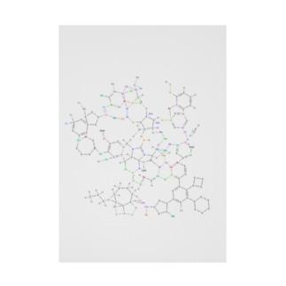 化学構造式シリーズ5 Stickable poster