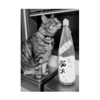 猫派酒と猫派猫 Stickable poster