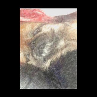 Lost'knotのペキニーズ犬ソノ名ワ「たぬき」 Stickable tarpaulin