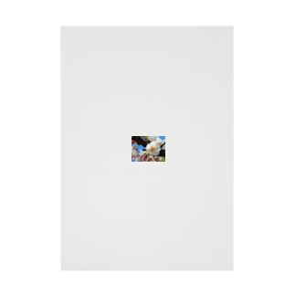 2020 WORLD TOP ARTIST modern art SHION world top photographer most expensive artの2020 WORLD TOP NEWS Most Famous Person Artist TOP MODEL best photographer tokyo Most Expensive Art Photo FREE AUCTION Lei Shionz world-union-market.com 世界 トップアーティスト オークション 現代アート © Earth Community デザイナー ランキング トップブランド 写真 アート 世界の現代アート worldnewscommunity.com Stickable tarpaulin