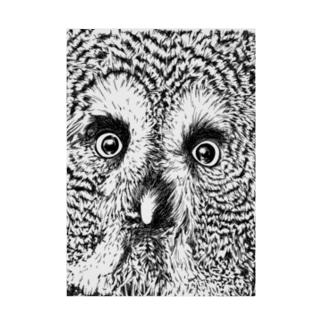 つぶらな瞳のカラフトフクロウ Stickable poster